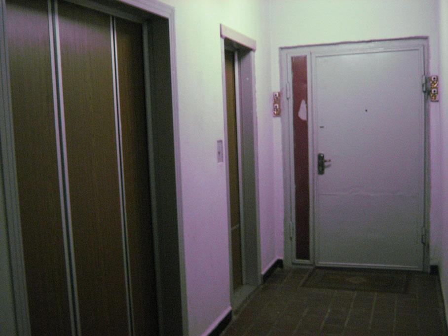 дверь входная в ново переделкино